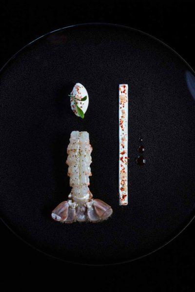 langoustine-nage
